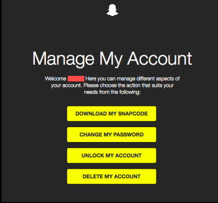 SnapchatOnlineManagement