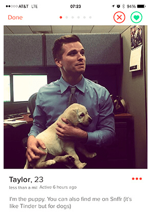 Clever bios for tinder dating 3