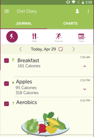 Ten Best Food Tracking Apps | My Diet Coach | Appamatix.com