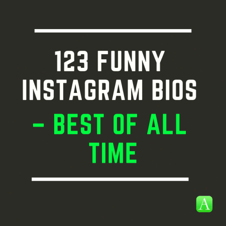 123 Funny Instagram Bios Best Of All Time Appamatix