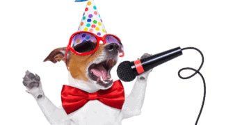 Funny Video Clips dog singing into microphone